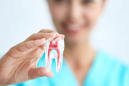 Dentist vs orthodontist